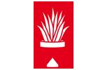 Plantacote_doniczkowe